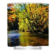 The Rifle River At Highbanks Base Shower Curtain