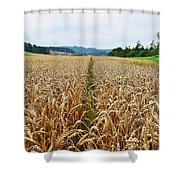 The Right Lane Shower Curtain