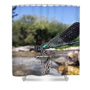 The River Dragonfly Shower Curtain