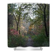 The Road Ahead No.2 Shower Curtain
