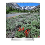 The Road Into Lundy Canyon Shower Curtain