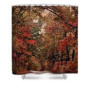 The Road To Home Shower Curtain