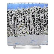 The Road To Petoskey Shower Curtain