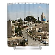 The Road To St. George Ruins Shower Curtain
