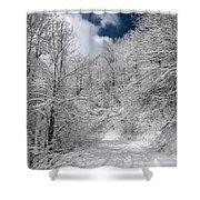 The Road To Winter Wonderland Shower Curtain