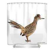 State Bird Of New Mexico Shower Curtain