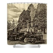 The Rocket Sepia Shower Curtain
