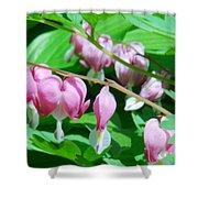 The Romance Flower Shower Curtain