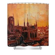 The Roofs Of Gdansk Shower Curtain