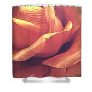 The Rose 7 Shower Curtain