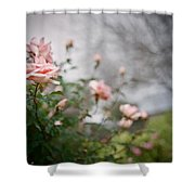 The Rose Garden Shower Curtain