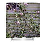 The Rose Shed Shower Curtain