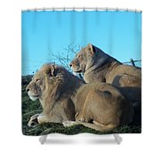 The Royal Couple Shower Curtain