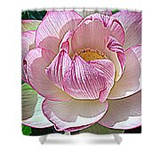 The Sacred Lotus  Shower Curtain