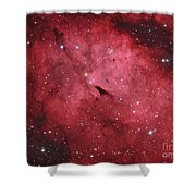 The Sadr Region In The Constellation Shower Curtain