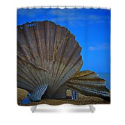 The Scallop Shower Curtain