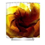 The Scorched Rose Shower Curtain