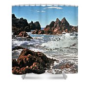 The Sea Abounds Shower Curtain