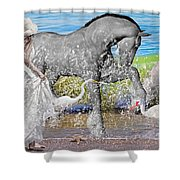 The Sea Horse Shower Curtain