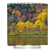 The Season Of Yellow Leaves Shower Curtain