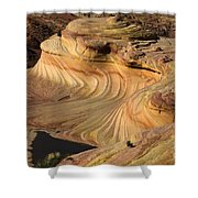 The Second Wave Arizona  3 Shower Curtain