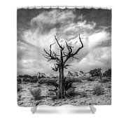 The Sentinal South Coyote Buttes Shower Curtain