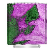 The Sentinel 11 Shower Curtain