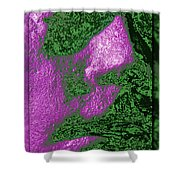 The Sentinel 13 Shower Curtain