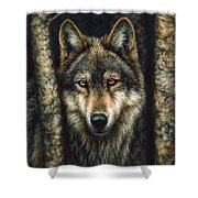 The Sentry Shower Curtain