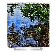 The Serenity Of Mind Shower Curtain