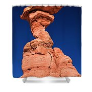 The Serpent Hoodoo Shower Curtain