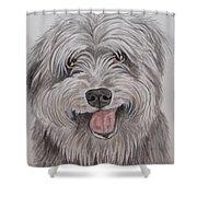 The Sheepdog Shower Curtain