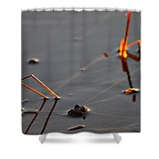 The Shine Of Your Eyes Shower Curtain