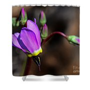 The Shooting Star Wildflower Shower Curtain
