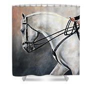 The Show Horse Stride Shower Curtain