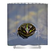 The Shy Frog Shower Curtain