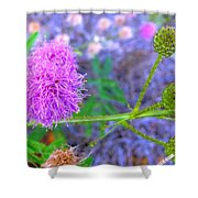 The Shy Plant Shower Curtain