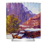 The Side Of The Road At Zion Shower Curtain