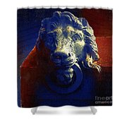 The Silence Of Stone Shower Curtain