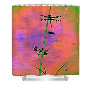 The Skimmer And The Whitetail Art #1 Shower Curtain