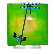 The Skimmer And The Whitetail Art #3 Shower Curtain