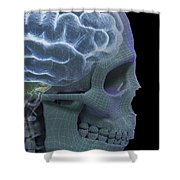 The Skull And Brain Shower Curtain