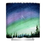 The Sky Is Falling Shower Curtain