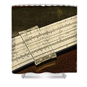 The Slide Rule Shower Curtain