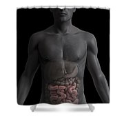 The Small Intestines Shower Curtain