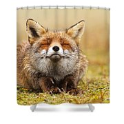 The Smiling Fox Shower Curtain