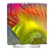 The Snapdragon - Flower Shower Curtain