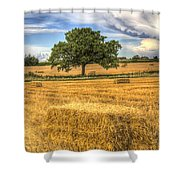 The Solitary Farm Tree Shower Curtain