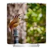 The Songbird Shower Curtain