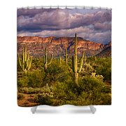 The Sonoran Golden Hour  Shower Curtain